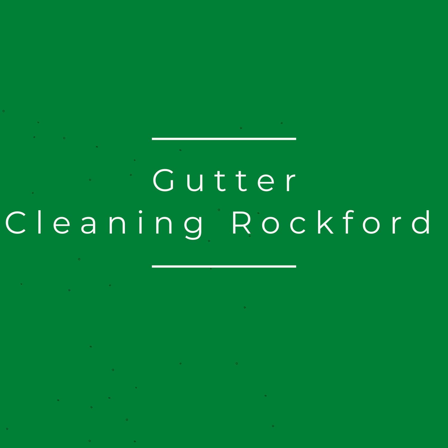 Gutter Cleaning Rockford IL